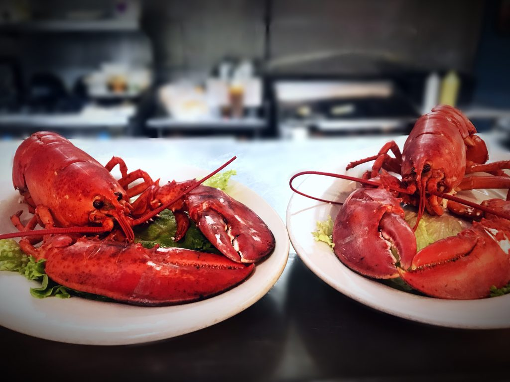 lobster-night-special