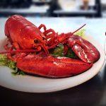 lobster-special