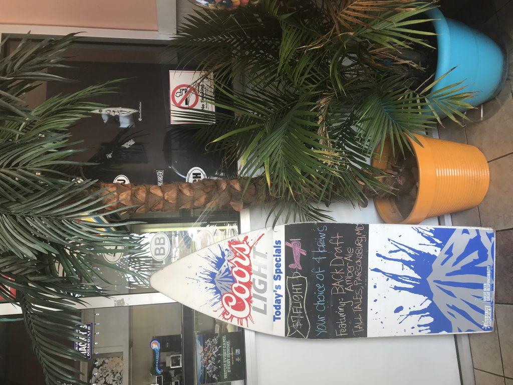 palm-tree-outside